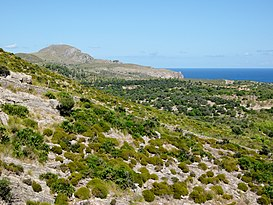 finca-colonia-sant-pere-video-home (17)
