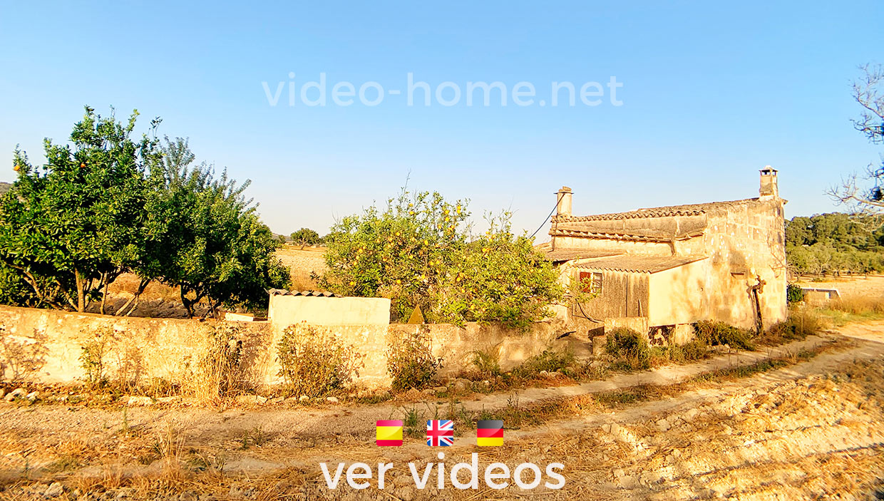 Mallorca, rustic property in the center of the island.