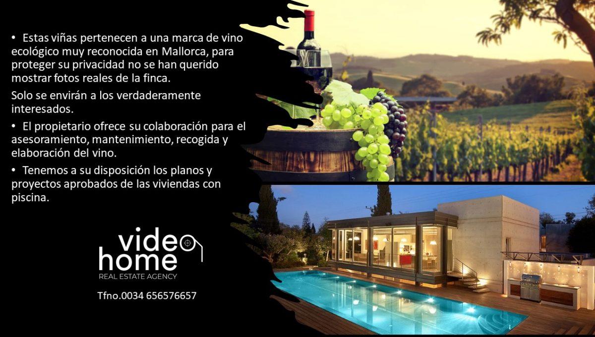 finca-viñas-felanitx-casa-piscina-video-home-inmobiliaria (1)