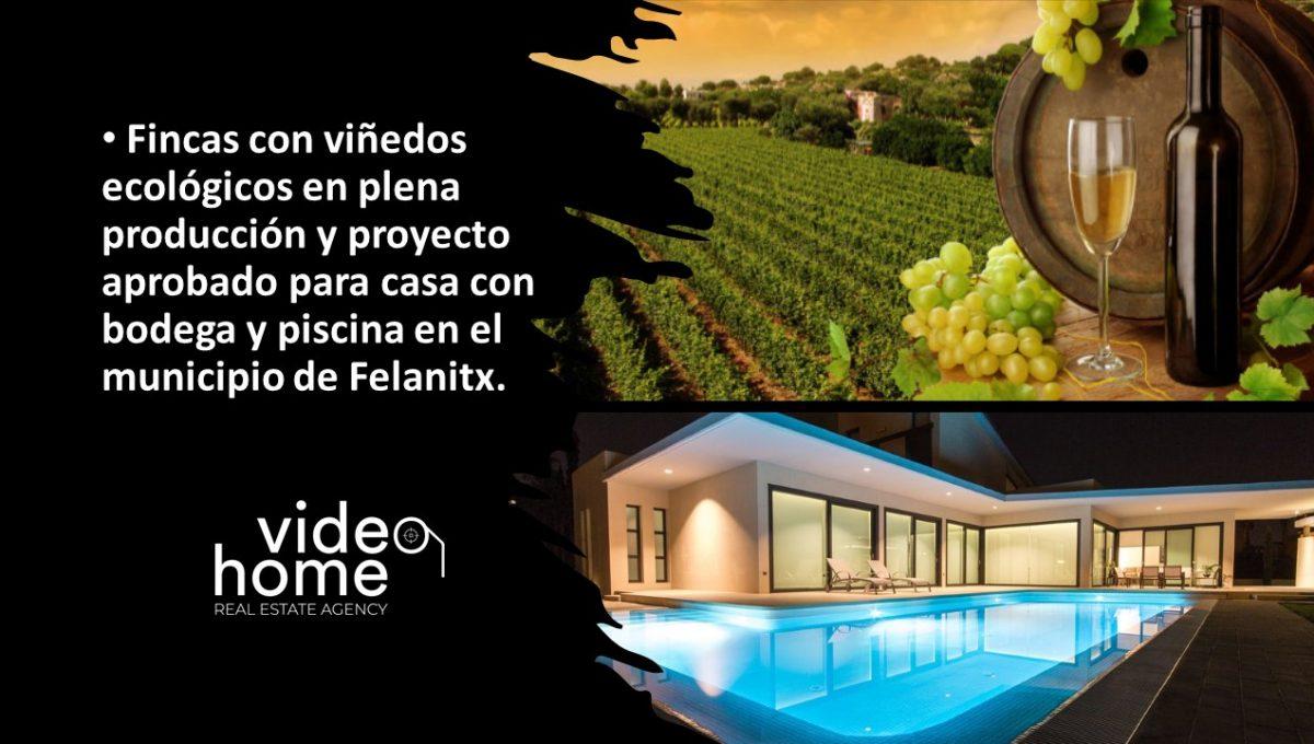 finca-viñas-felanitx-casa-piscina-video-home-inmobiliaria (3)