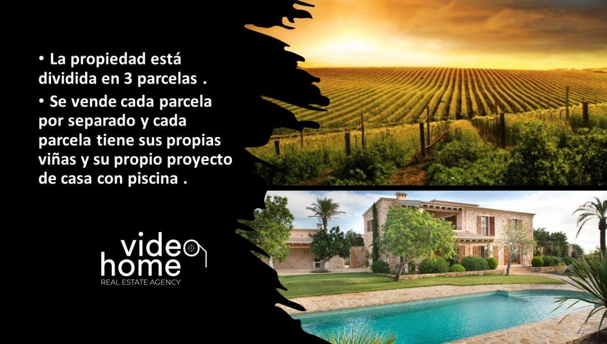 finca-viñas-felanitx-casa-piscina-video-home-inmobiliaria (4)