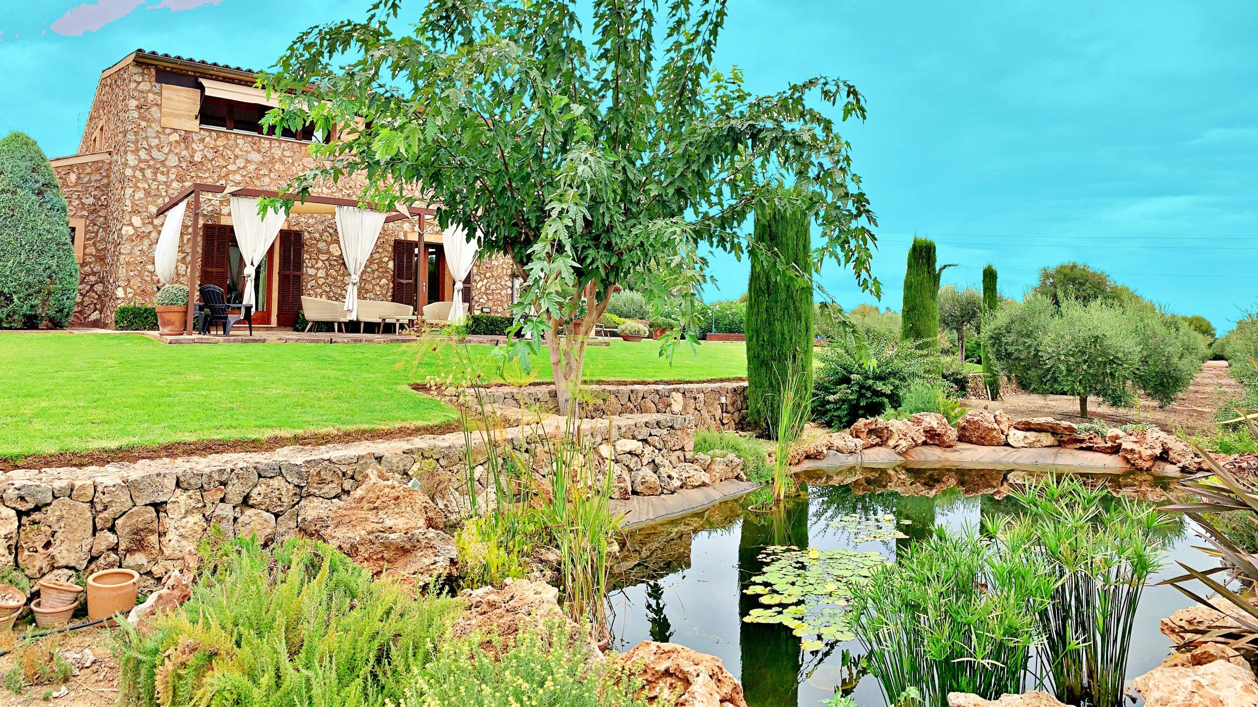 Finca de oliveras en Llubí con Casa Mallorquina construida en el 2009