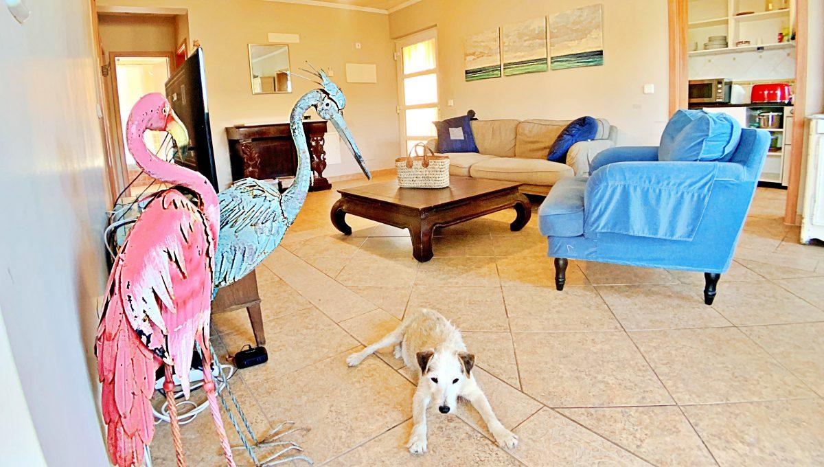 casa-planta-baja-jardin-piscina-playa-cala-mandia-mallorca-video-home (1)